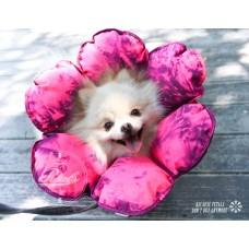 花朵防舔咬頭套《防潑水》【棉花板】(尺碼XS)  **台灣新型專利設計**